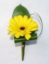 Single Gerbera Buttonhole